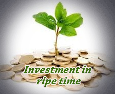 Investment in Ripe Time